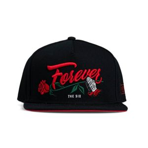 Cayler & Sons Forever The Six Snapback Cap black
