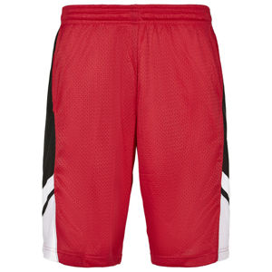 Southpole Basketball Mesh Shorts red